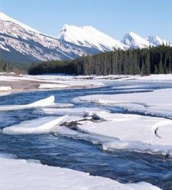 Thaw is the period when the snow and ice melt, at the end of the winter, in cold climates.