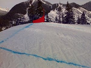 Triangular gates must be used in Ski Cross. The size of the gate is:  Base 130cm, Long side 110cm, Short side 40cm. The turning pole must be a stubby pole (45 cm long)